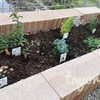 ブロックを置くだけ!簡単・短時間で出来る花壇の作り方