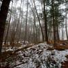 木曽駒高原 霧の森