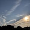 リブログ:夏至の日の徒然に...