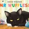 Mr. WUFFLES! / ミスターワッフル! by David  Wiesner