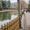 小倉池(京都府京都)