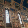 ヴェネツィア日帰りパドヴァ観光②スクロヴェーニ礼拝堂でジョットにひたる【2019年ヴェネツィア&ウイーン旅行㉚】