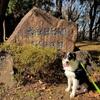 ワンコと一緒に藤沢市の大庭城址公園へ遊びに行ってきました。
