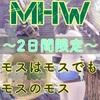 【MHW】金策💰モスをモスで【アステラ祭】