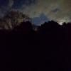 月が昇りゆく