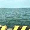 仕事終わりに海に直行🎣