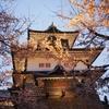 金沢城公園のお花見「ライトアップ」