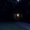 フォトグラフ「夜の公園」