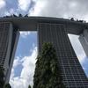 シンガポール記1ホテルレポ マリーナベイサンズホテル  1月にプール