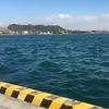 1月26日釣行~細島工業港・松ヶ鼻・サンポウ~釣り時間より、釣り場を求めての移動時間の方が長いです><