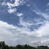広島旧市民球場の空と一日。