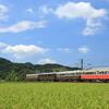 ことでんレトロ4重連列車を撮る その1 2020年 夏の四国遠征⑯