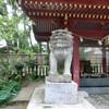 青井阿蘇神社の狛犬