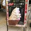 名古屋人は本当にキンキラキンが好き?