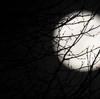 23年前のあの夜、街灯りが消えた神戸を満月が見下ろしていました。