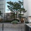 神戸の旅(1)異人館界隈前篇