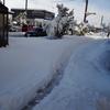 トンネルを抜けるとそこは雪国じゃなかった〜東京出張のお知らせ