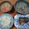 豚汁と焼き鯖とモヤシ炒め