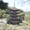 2020 一の坂周辺の桜 その参・了(瑠璃光寺)