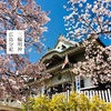桜満開!三輪明神 広島分祀