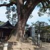 艮神社〜千光寺