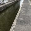 広島市安佐南区に流れます疎水。八木用水と言いまして元来は農業用水路です。