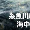 糸魚川ヒスイ原石というタイトルの雑談になってもうてるじゃん・・・