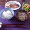 焼き鮭 二段活用