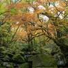 期間限定公開の熊本マゼノ渓谷の紅葉🍁