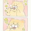 ネコノヒー「もんじゃ熱」