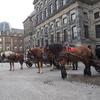 【自由の国オランダ】こんな旅ブログはさっさとおわりにしたい。