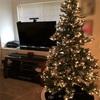クリスマスツリーを飾りました&アメリカ版ツリーあるある