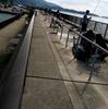 釣場調査 サビキ釣り 吉良サンライズパーク (宮崎港)