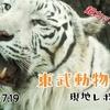 【過去レポ#1】ホワイトタイガーがカッコいい!東武動物公園現地レポート(2019/07/19)【動物園】