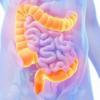 『ダイエットの鍵は、腸内フローラ』~やせ菌を増やせ~