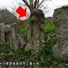 山王宮のいっかくに祀られている庚申塔② 大分県豊後高田市上香々地