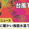 台風10号が気になりますね。防災の神髄は日蓮正宗への入信です。