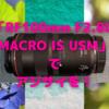 Canon「RF100mm F2.8L MACRO IS USM」でアジサイを!〜キレッキレと、とろけるボケ…〜