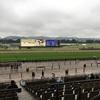 2017 アイルランドトロフィー府中牝馬ステークス 感想戦