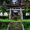 Vストローム250と京都 舞鶴市の松尾寺まで季節の花鑑賞ツーリング