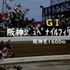 阪神ジュベナイルフィリーズ2018 騎手データを分析。馬券に絡むのは誰か。