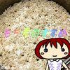 食物繊維がとれて腸内環境にいい麦ごはんのすすめ★麦100%ごはんレビューあり