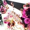 【クリスマスリレー⑥】《本店5階》プリフロア メインディスプレイがクリスマスバージョンに!!
