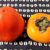 愛媛の富士柿、和歌山のたねなし柿を食べる。