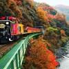 嵯峨野観光鉄道(トロッコ列車)で席を譲るか