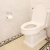 【7週目報告】毎日トイレ掃除&たたき拭き。「運気云々」はちょっと置いておいて。