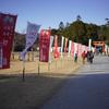師走の午後の光注ぐ上賀茂神社で@2020