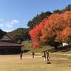 旧閑谷学校の紅葉がとてもきれいでした。