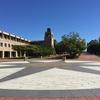 働きながら海外MBA体験談|BOND大学オンラインコースの内容まとめ