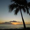 2017年4月 Vol.5  古希祝のハワイ・アウラニ旅行 ~ 4日目 アウラニなら古希でもプール、海を楽しめます♪ ~
